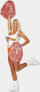 Hooters Franchise for Sale