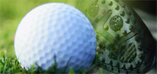Nevada Bob's Golf Franchise for Sale