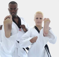 Pro Martial Arts Franchise for Sale